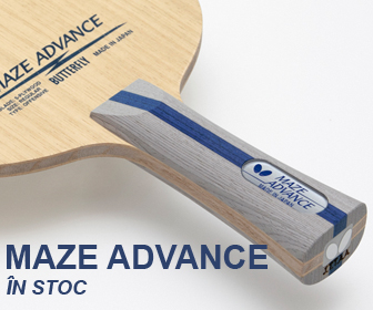 Maze Advance